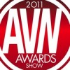 AVN Awards Winds Down
